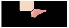pandhys-logo